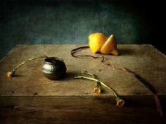 весна в сухом остатке© Юлия Близнецова #Still #Life #Photography
