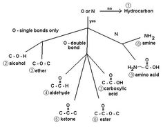 The derivatives of hydrocarbons (organic compounds) which