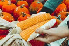 Alimentos ecológicos o alimentación sostenible