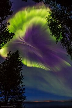 Northern lights in the sky over Murmansk region, Russia