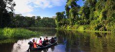 Evergreen Lodge Tortuguero Monteverde, Travel Essentials, Evergreen, Costa Rica, Boat, Dinghy, Travel Necessities, Travel Must Haves, Boats