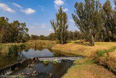 Dam at the Modderfontein Nature Reserve