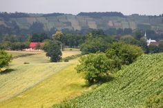 Colinas cultivadas na Polônia,  a leste de Cracóvia. Observe o modo de criação de faixa longas e estreitas de cultivos diferentes. Perto de Jaksice (na estrada E79), Polônia.  Fotografia: Stuart Spicer no Flickr.