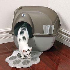 litterrobot ii 2 automatic self cleaning cat litter box review buy meow find out at automatic cat litter box pinterest litteru2026