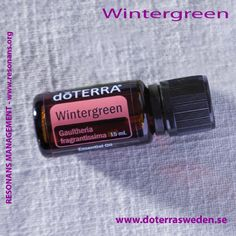 WINTERGREEN ESSENTIAL OIL / VINTERGRÖNA ETERISK OLJA