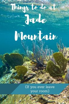 Things to do at Jade