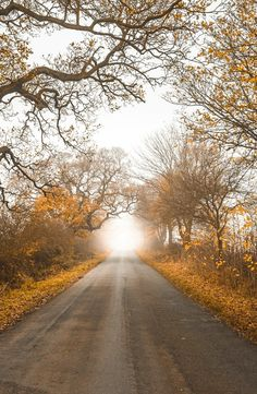 Vanishing Point (Durham, England) by Claire Willans