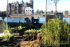 Time Circus Builds a Floating Vegetable Garden on an Abandoned Ship Crane in Belgium | Inhabitat - Green Design, Innovation, Architecture, Green Building