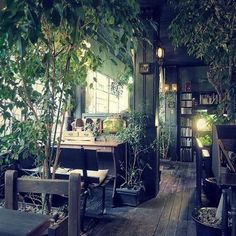 21 Ideas for Planting Plants in a Minimalist Home Without Extensive Gardens – indoorjungle Cafe Interior, Interior Exterior, Interior Architecture, Interior Design, Café Design, House Design, Book Cafe, Earthship, Minimalist Home