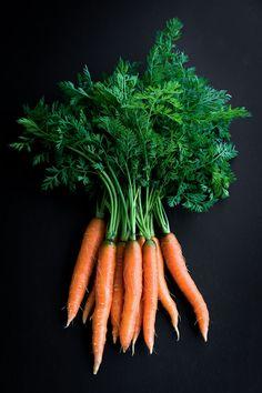 С какими болезнями справляется морковь. Лечение варикозного расширения вен ботвой моркови