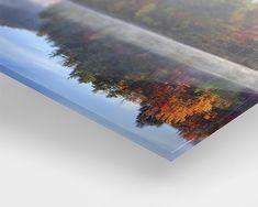 Foto op Plexiglas Photo Sur Plexiglas, Plexiglass, Oeuvre D'art, Les Oeuvres, How To Dry Basil, New Homes, Herbs, Grande, Photography