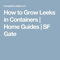 How to Grow Leeks in Containers | Home Guides | SF Gate