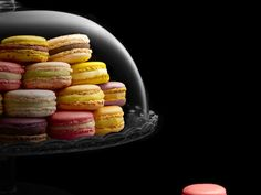 You Can Buy the World's Most Expensive Macaron for $9,703 | A luxurious resort in Florida is now selling the world's most expensive macaron. The price includes a crystal box and overnight stay