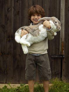 dustyfleas:  The Easter Rabbit? lol