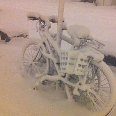 Bicycles full of snow in Montreal / Plateau
