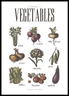 Schickes Plakat/Poster für die Küche mit verschiedenen Gemüsearten. Schön anzusehen und gut geeignet als Erinnerung daran, täglich Gemüse zu essen. Das perfekte Küchenposter für die moderne Küche. www.desenio.de