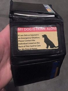 If You Are A Pet Owner This Is A Must Have