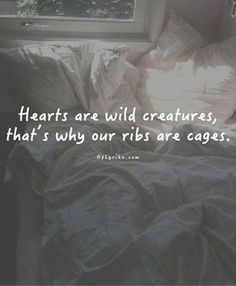 Hearts are untamed. Take care of your heart because you only have one.