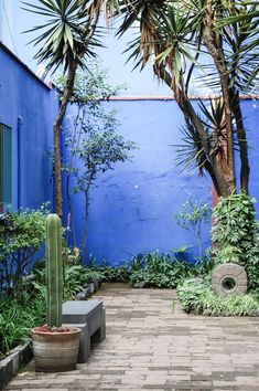 this vibeeeee - Frida Kahlo House Mexican Courtyard, Mexican Garden, Moroccan Garden, Moroccan Style, Diy Garden, Garden Art, Garden Design, Small Gardens, Outdoor Gardens