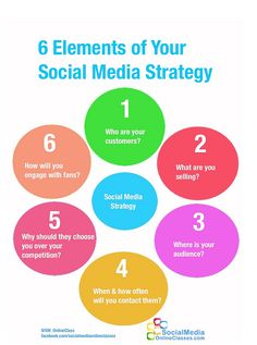 Social Media Strategy Infographic Best Health Infographics