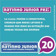 Em 2004, Ratinho Junior lutou pelos direitos dos animais. Em 2013, vai continuar trabalhando para acabar com os maus tratos e o abandono. #equipenovasideias #onda20