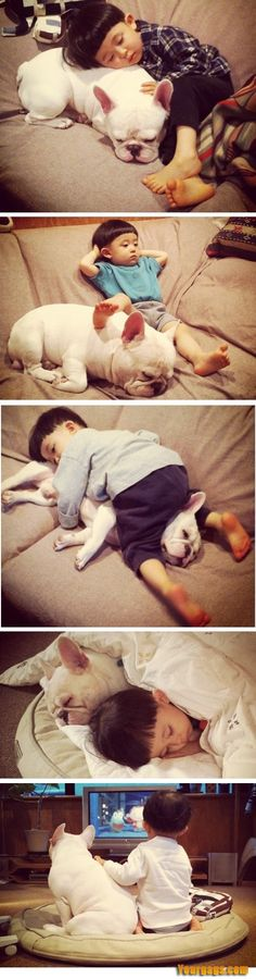 Tokyo-based mother Aya Sakai is taking pictures everyday of her son Tasuku and his best friend, a French Bulldog 'Muu' and post it on Instagram and her Facebook page