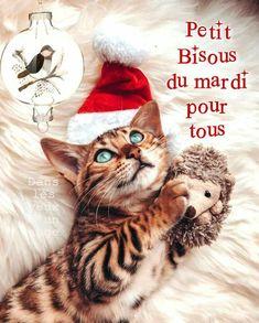 Akatsuki, Bon Mardi, Happy Tuesday, I Want You, Bonjour, Handsome Quotes, Merry Little Christmas