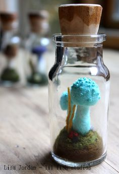 lil fish studios: specimens in spice jars