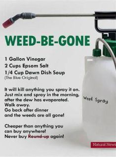 Saw this online and Im wondering if anyone has tried it? Im a true newbie in the yard and Im looking for natural weed killer recipes that work. Really want to avoid RoundUp! Garden Yard Ideas, Lawn And Garden, Garden Tools, Organic Gardening, Gardening Tips, Gardening Books, Gardening Supplies, Weed Killer Homemade, Homemade Weed Killers