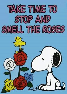 Love to smell roses :-)