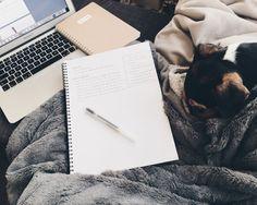 my little studyblr - messy-studying: ›› pm Essay. School Motivation, Study Motivation, Homework Motivation, Studyblr Notes, Essay Plan, School Stationery, Desk Stationery, Study Space, Study Desk