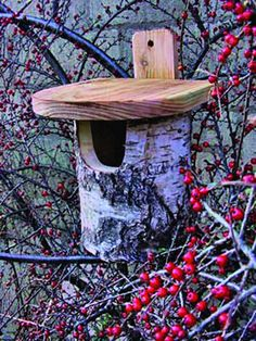 Silver Birch Robin Nest / Bird Box from Wildlife World  £12.99