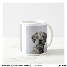 Schnauzer Puppy Portrait Photo Coffee Mug Young Schnauzer dog head shot with grey background Cute Puppies, Dogs And Puppies, Cute Dogs, Schnauzer Puppy, Pet Photographer, Portrait Photo, Gray Background, Photo Mugs, Coffee Mugs