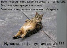 Лежи спокойно!!! Никто не видит...