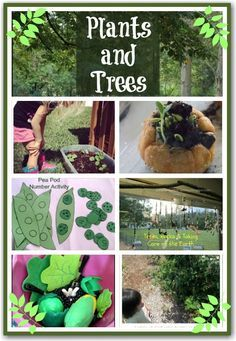 Trees and Plants - fun activities for kids exploring the natural world
