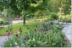 Mökkipuutarhassa: Rintamamiestalon piha Garden Inspiration, Home And Garden, Plants