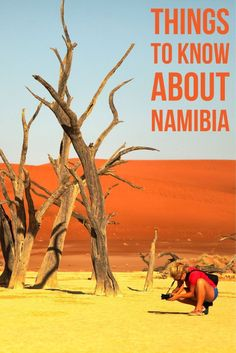 Heading to Namibia soon? Here are some Namibia Travel Tips to help you out! Africa Destinations, Travel Destinations, Holiday Destinations, Travel Guides, Travel Tips, Travel Checklist, Travel Advice, Cool Places To Visit, Places To Travel