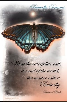This video has music by Richard Bach and portrays the message of butterflies and transformational change