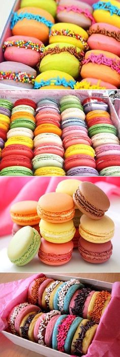 Best Ideas for chocolate decorados como hacer Macaroons, Chef Gourmet, Cookie Recipes, Dessert Recipes, Delicious Desserts, Yummy Food, Gourmet Desserts, Plated Desserts, Gateaux Cake
