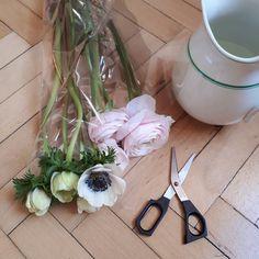 Is it OK to admit I get scared going into a florist shop (I think it's boutique fear)? A big challenge overcome today. Florist shop  school girl Italian = Instagramtastic! . . . . . #seeingthepretty  #inspiredbynature #botanticalforagersunitedsocietyinc #byarrangement #inspiredbypetals #flashesofdelight #myhomestyle #flowersofinstagram #bouquetofflowers #flowersmakemehappy #loveflowers #splendid_flowers #cornersofmyhome #still_life_gallery #beautyofstillmoments #momentsofmine…