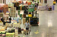 Genova Wholesale Market, Italy #wholesalemarkets #genova