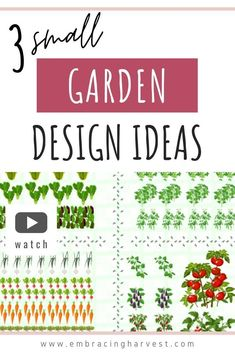 I'll share 3 edible garden design templates ideas that are all under 100 square feet. And see what you can get from a small garden space. Garden Plants Vegetable, Fruit Garden, Edible Garden, Easy Garden, Herb Garden, Garden Ideas, Small Garden Design, Small Space Gardening, Raised Garden Beds
