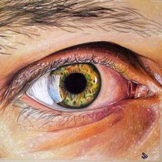 """""""Dino's Eye"""" 10x10"""" Prismacolor Premiers on Strathmore Toned Tan Paper"""