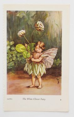White Clover Fairy Picture, Flower Fairy, nursery art, Flower Fairies of the Spring, Cicely Mary Barker by PeonyandThistlePaper on Etsy https://www.etsy.com/listing/201483283/white-clover-fairy-picture-flower-fairy