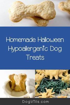 You already have your pup on the best hypoallergenic dog food, but finding great hypoallergenic dog treats can seem a little daunting at times. Halloween Cookie Cutters, Halloween Cookies, Hypoallergenic Dog Treats, Best Dog Food, Homemade Halloween, Dog Food Recipes, Pup, Pumpkin, Vegetarian