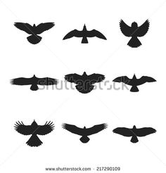 small eagle tattoos google search tr boles pinterest small rh pinterest com Eagle Shoulder Tattoo flying eagle silhouette tattoo