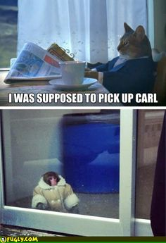 Forgot to pick up carl.