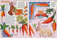 ru / Фото - Encyclopedie du Point de Croix-Fruits-Legumes et autres Gour - Chispitas Types Of Embroidery, Ribbon Embroidery, Embroidery Designs, Embroidery Books, Cross Stitch Designs, Cross Stitch Patterns, Cross Stitch Kitchen, Crochet Kitchen, Le Point