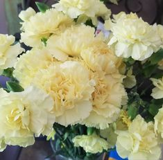 Yellow Carnations, Mini Carnations, White Carnation, Peach Flowers, Cream Flowers, Colorful Flowers, White Flowers, Flowers For Sale, Flowers Online