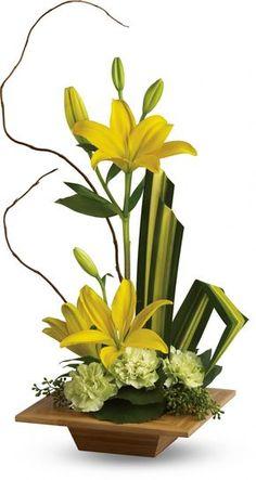 centro amarrillo lilis